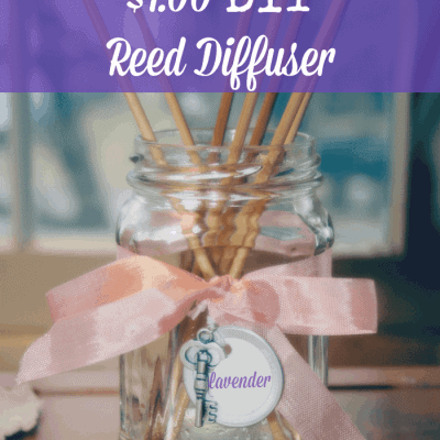 Decorative Diffuser-Homemade & Inexpensive