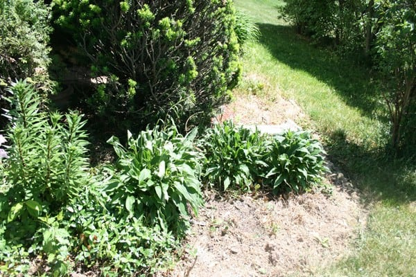 Flower bed in front of house before being weeded and laying down fresh mulch and edging with stone - DIY curb appeal makeover