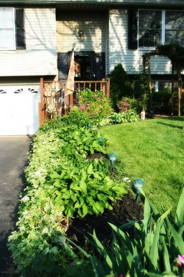 Curb appeal makeover - area along the driveway after weeding and edging the flower bed