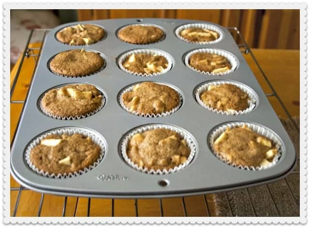 Apple Pie Cupcakes Out of the Oven