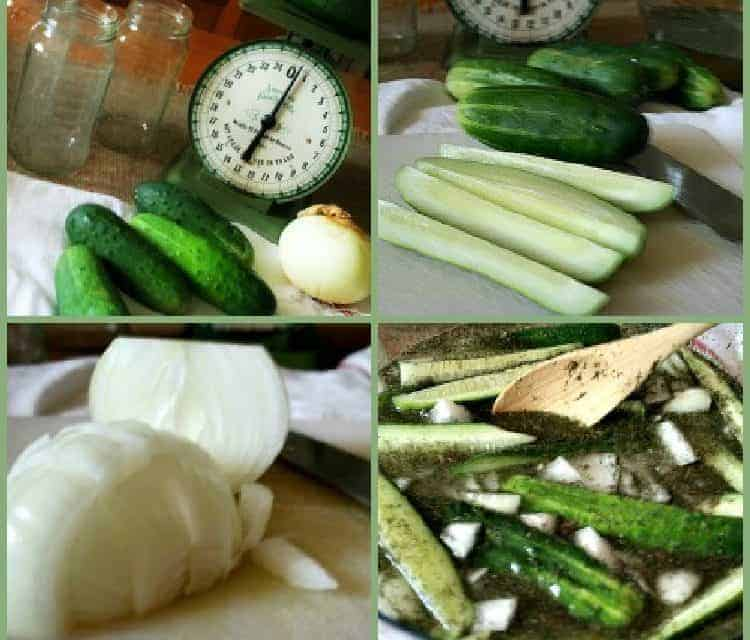 5 Minute Refrigerator Pickles