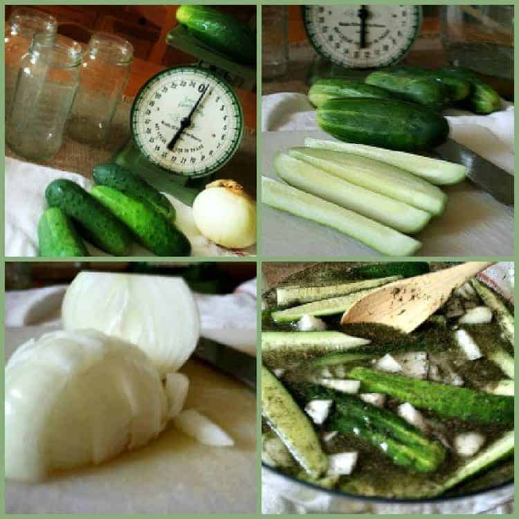 5 Minute Refrigerator Pickles and Why Shopping Alone is Better {sometimes}