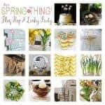 It's a Spring Thing Blog Hop Recap and One BIG Linky Party