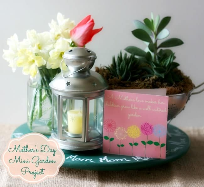 Mini Succulent Garden with Chalkboard Lazy Susan~ Homemade Mother's Day Project