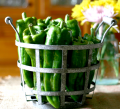 Marconi Peppers |The Busy Gal's Guide to Homemaking at cupcakesandcrinoline.com