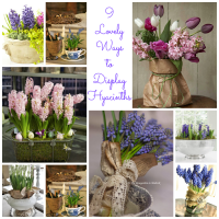 9-lovely-ways-to-display-hyacinths
