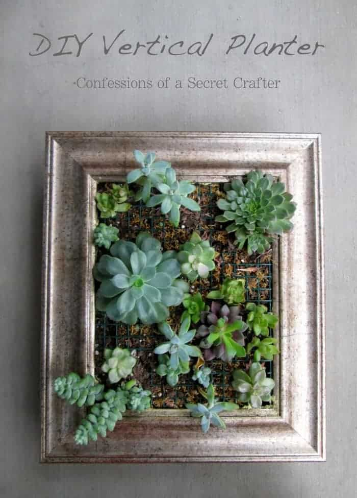 DIY Vertical Planter