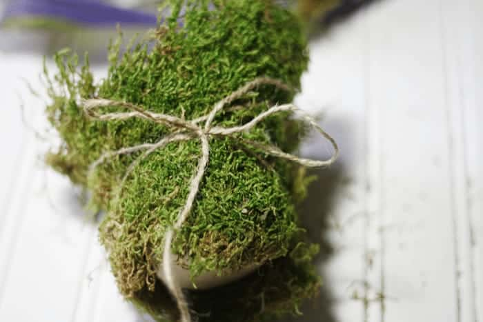 Peat Pot wrapped with Moss and Twine from Cupcakes and Crinoline