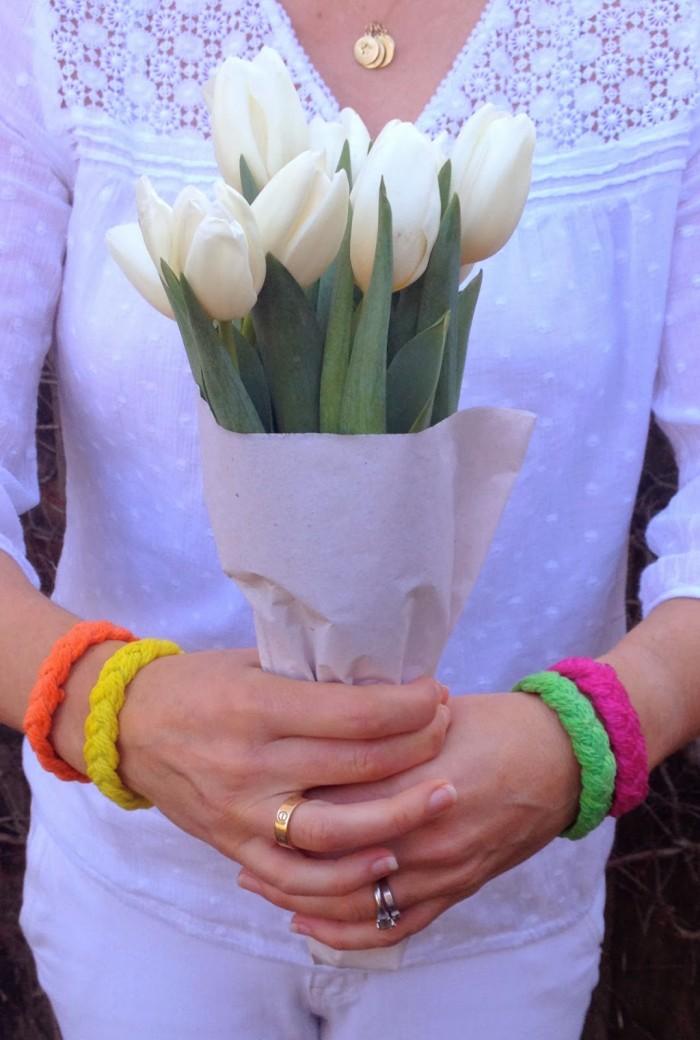 tulip tulips hold