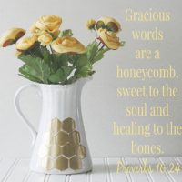 Gilded Honeycomb Pitcher Proverbs 1624