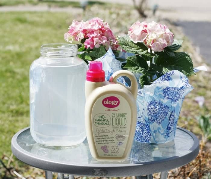 #WalgreensOlogy #shop gray-water with flowers