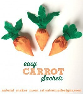 easy-carrot-sachets-264x300