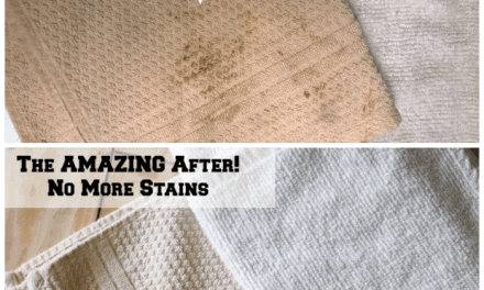 I Took The #BizChallenge to Remove My Family's Toughest Stains