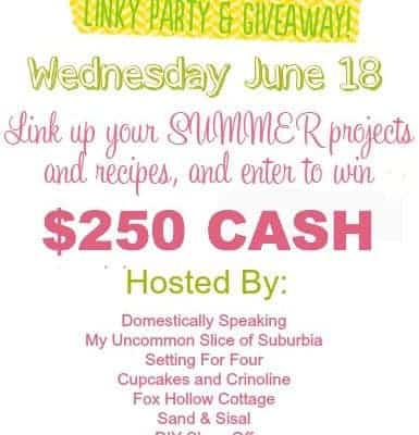 Fun in the Sun $250.00 CASH Giveaway and Linky Party