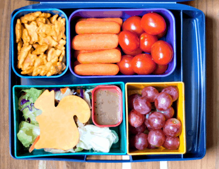 A healthy bento box for kids ~ #rockthelunchbox #spon