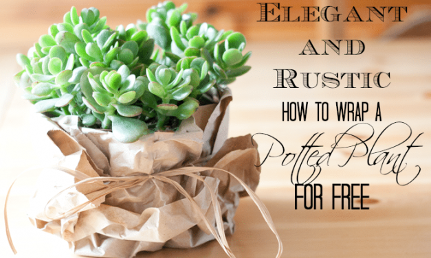 The Elegant, Rustic and Free Way to Wrap Potted Plants