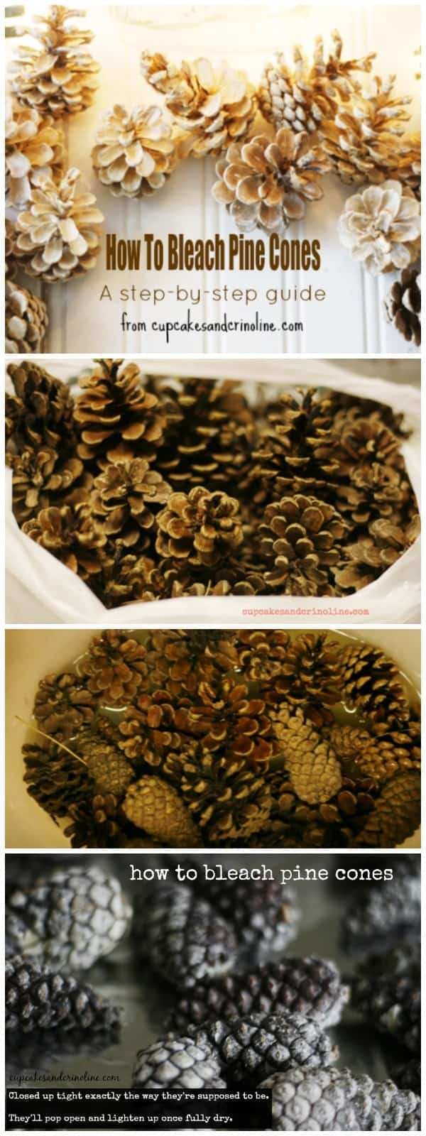 How-to Bleach Pine Cones. An easy to follow step-by-step guide from www.cupcakesandcrinoline.com