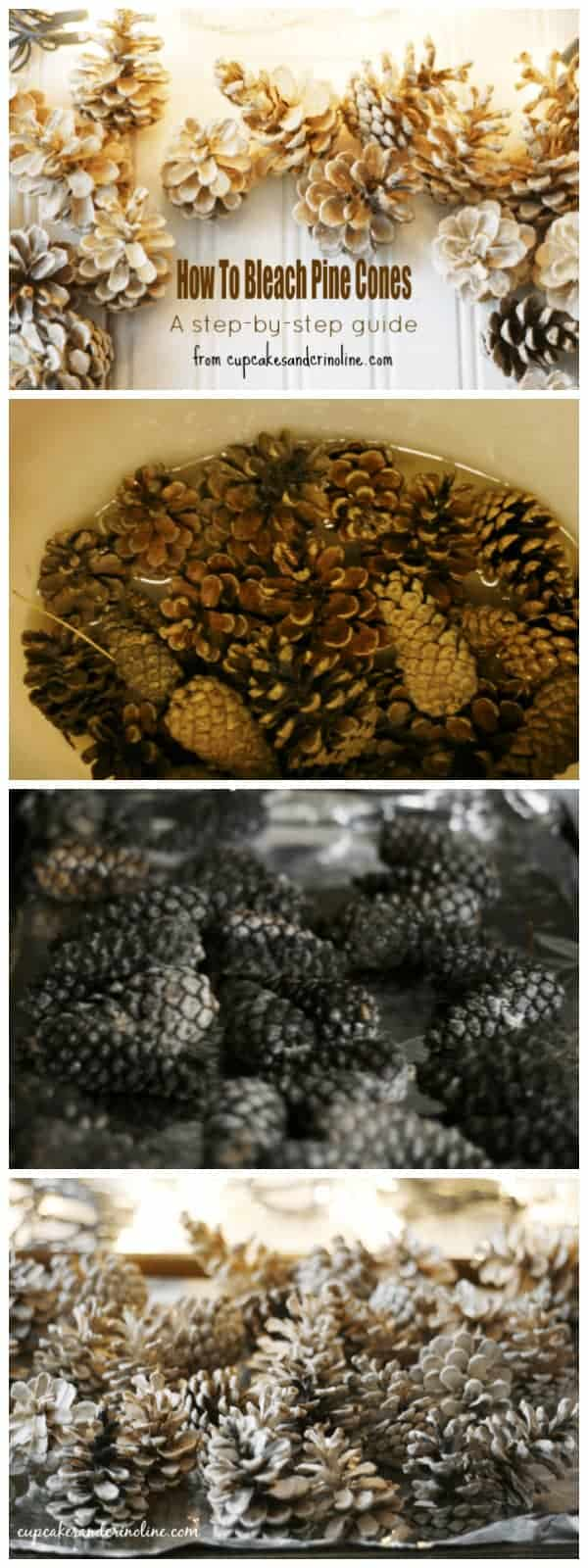 How to bleach pine cones - a step-by-step guide from www.cupcakesandcrinoline.com