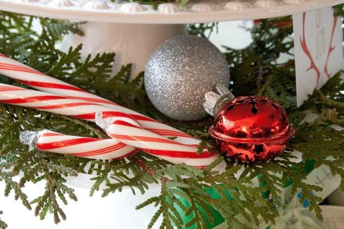 Christmas Trees on Cars 2_MG_2705