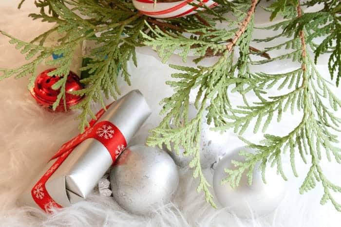 Christmas Trees on Cars 2_MG_2728