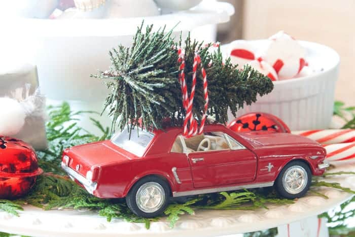 Christmas Trees on Cars_MG_2704