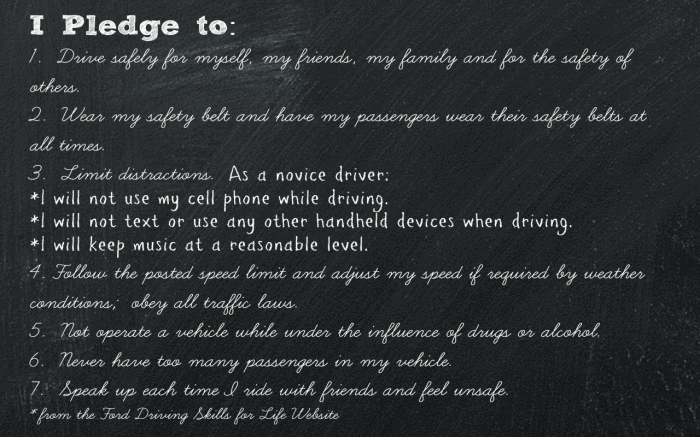 Ford Driving Skills for Life Pledge 1280 x 800