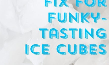 The 60 Second Fix for Funky Tasting Ice Cubes