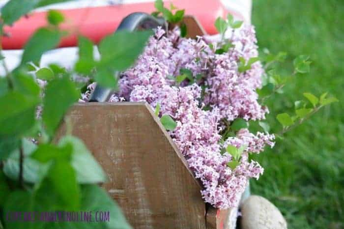 The Secret to Creating a Cozy and Charming Outdoor Space ~ french lilacs in a rustic wooden box ~ cupcakesandcrinoline.com