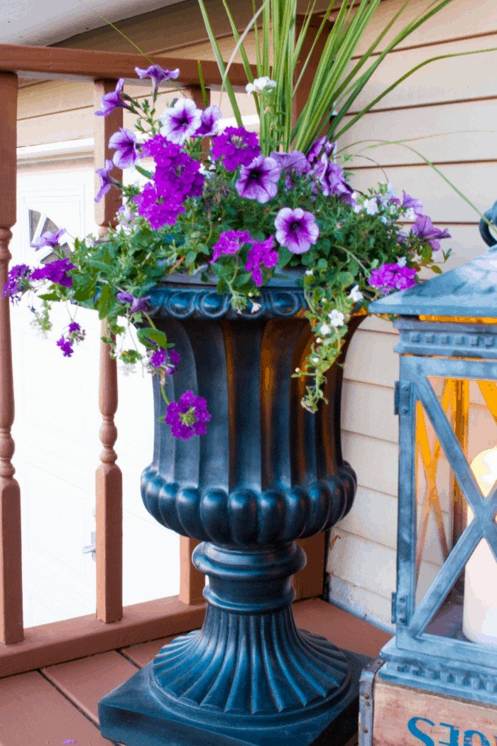 Front Porch Decor ~ Black Tuscan Urn filled with annuals at cupcakesandcrinoline.com