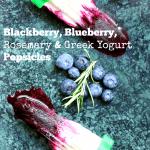 Blackberry, Blueberry and Greek Yogurt Popsicles