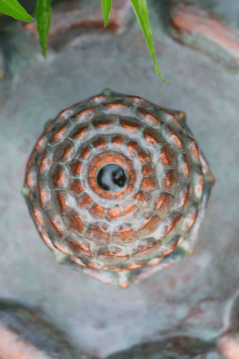 The top of a garden fountain