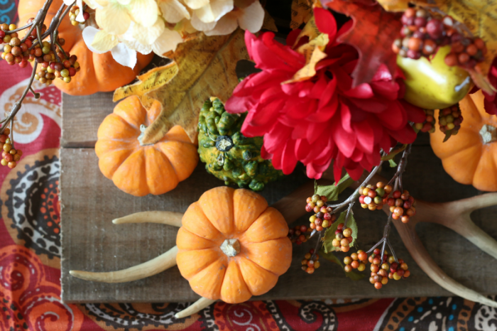 Thanksgiving tablescape with mini pumpkins, gourds, antlers and faux flowers on a paisley tablerunner with salvaged pallet wood - via cupcakesandcrinoline.com