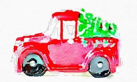 Christmas Trees on Cars