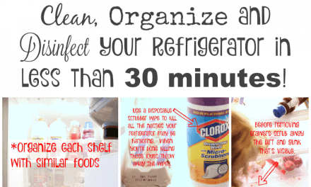 How to Clean and Organize Your Refrigerator