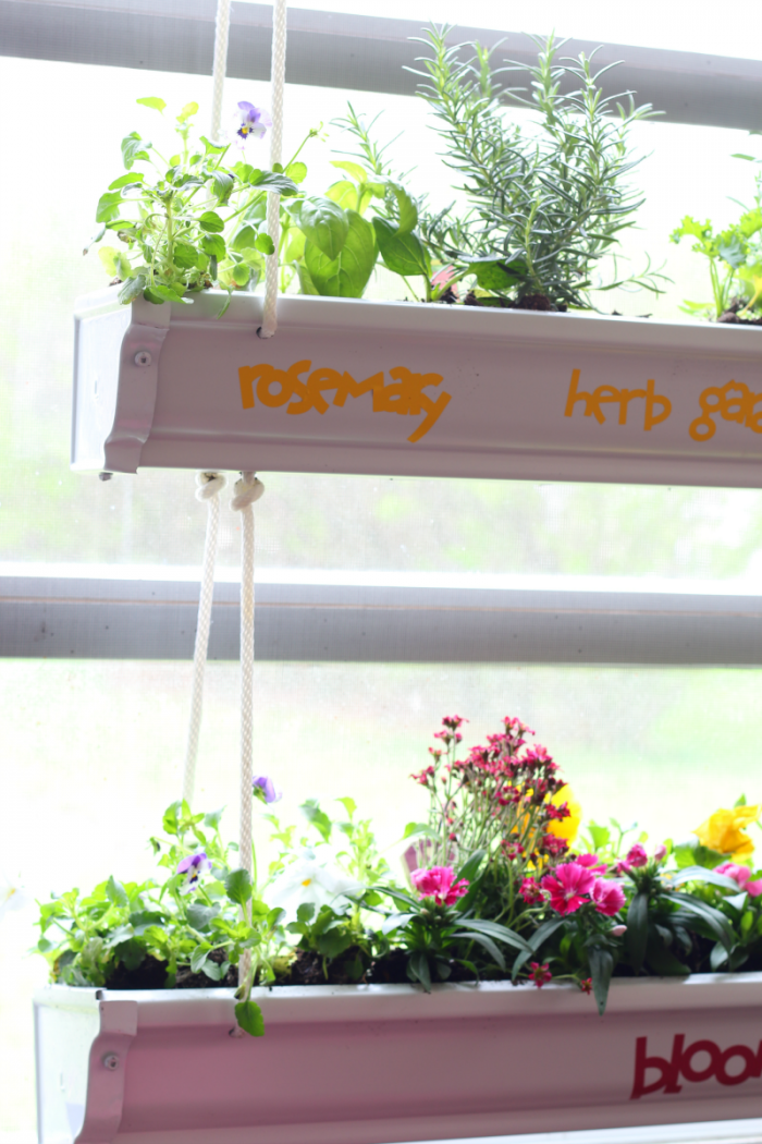 Hanging Gutter Planter decorated with cricut vinyl - herb garden, bloom at cupcakesandcrinoline.com