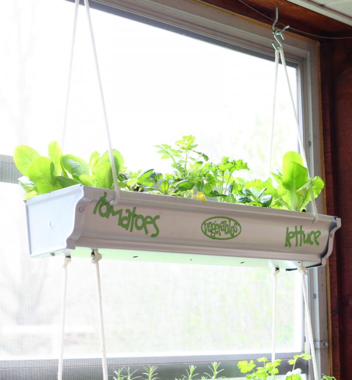 Hanging Gutter Planter filled with fresh vegetables at cupcakesandcrinoline.com