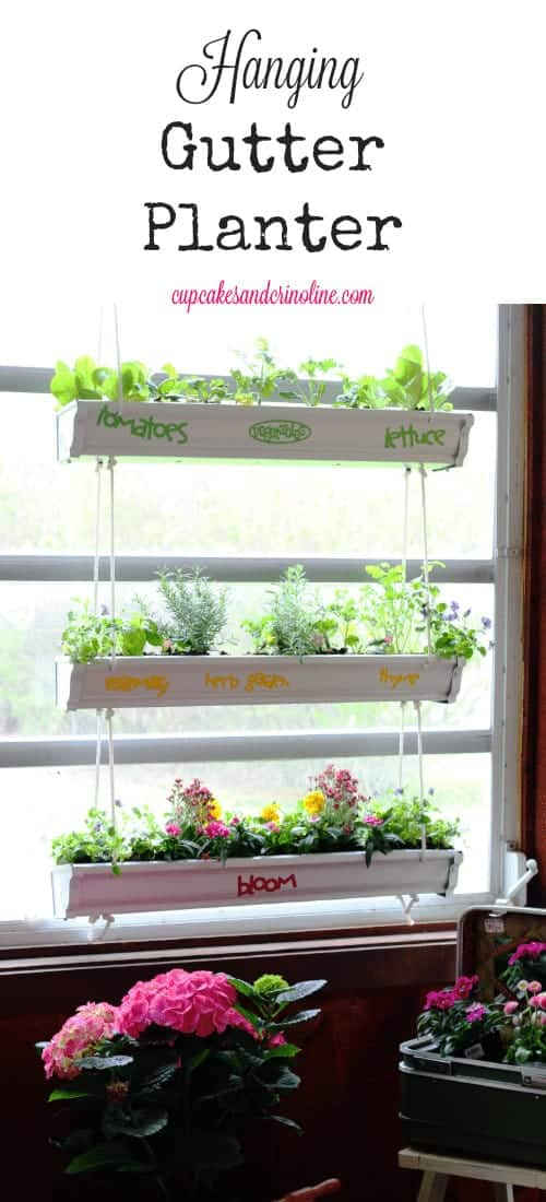 Hanging gutter planter easy DIY at cupcakesandcrinoline.com