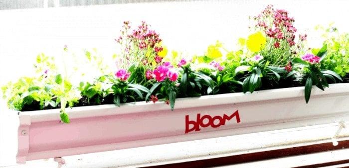 Hanging gutter planters - bloom (cricut) cupcakesandcrinoline.com