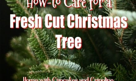 How To Care for a Fresh Christmas Tree