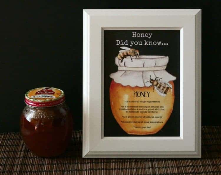 Homemade Honey Cough Drops and Honey Echinacea Cold Syrup plus free Bee Well Soon Printables at www.cupcakesandcrinoline.com