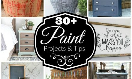 30 Plus Paint Projects and Tips
