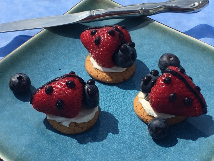 Lady bug fruit treats