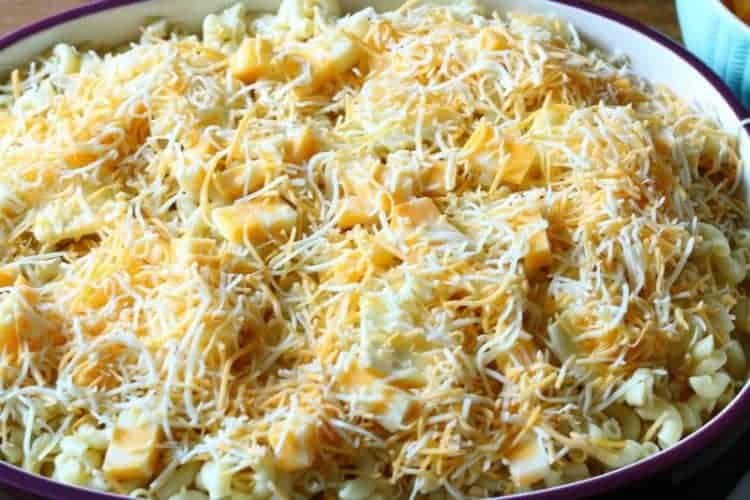 Homemade oven-baked macaroni and cheese - top layer of shredded cheese