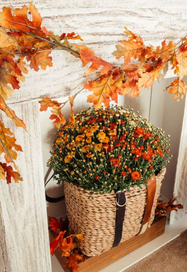 Close up of orange mums in a seagrass basket with a fall leaf garland