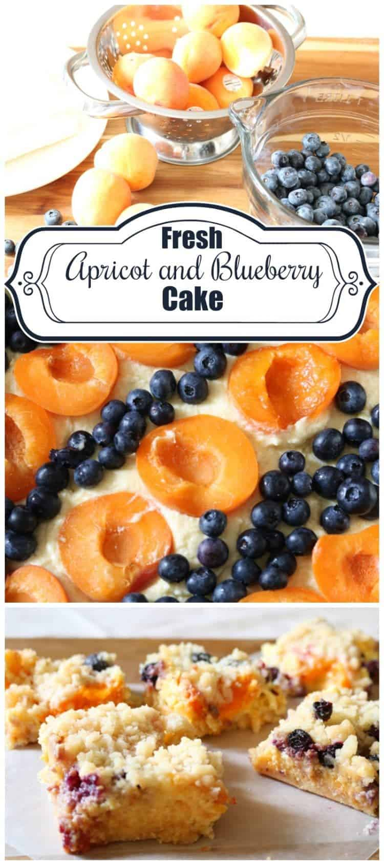 Fresh Apricot and Blueberry Cake from cupcakesandcrinoline.com