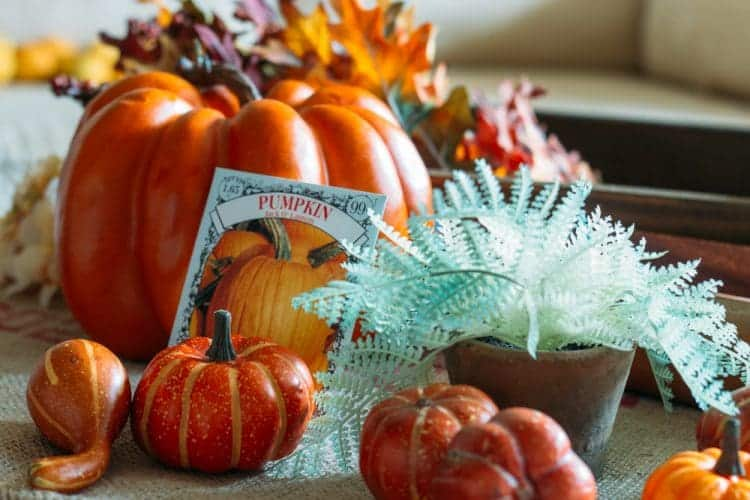 How to Layer and Style an Autumn Farmhouse Tray
