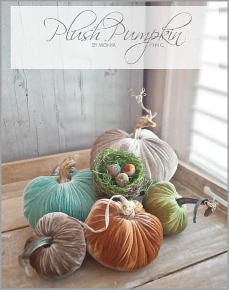 Plush Pumpkin Giveaway
