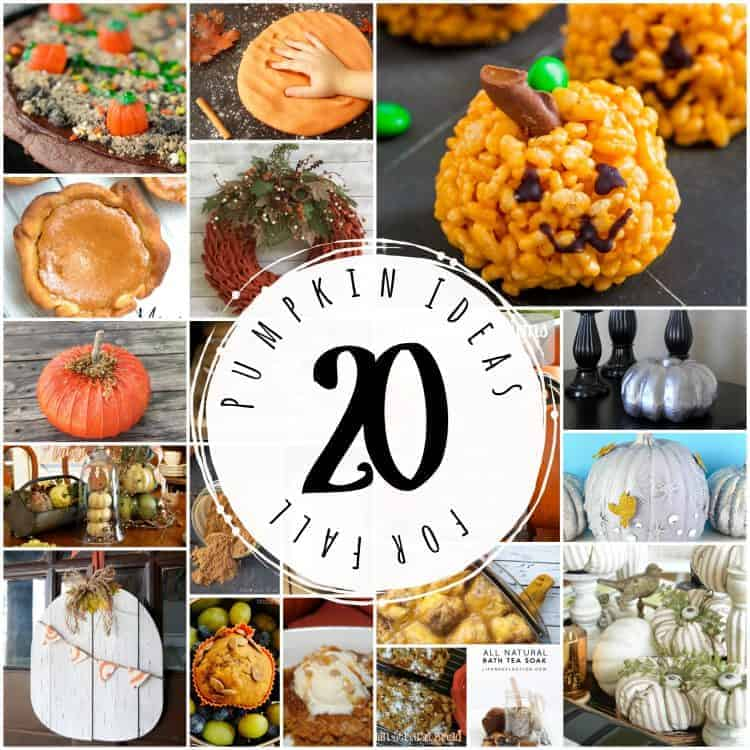 Pumpkin Everything! 20 How-to's for NOW!