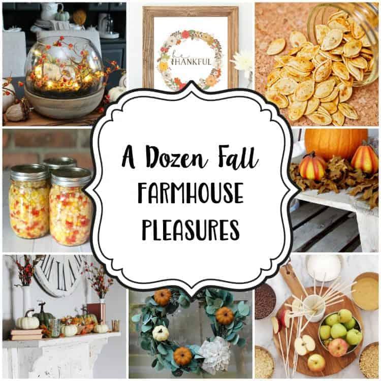 Fall Famhouse Pleasures