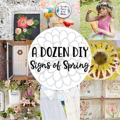 12 DIY Signs of Spring